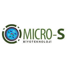 micro-s-girisim
