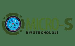 micro-s-logo